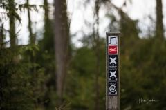 Waldskulpturenweg-Mai-2021-05