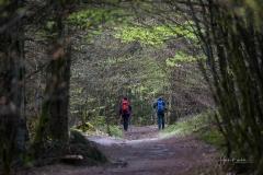 Waldskulpturenweg-Mai-2021-06