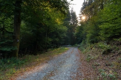 Waldskulpturenweg Hexenplatz-Oberkirchen-1