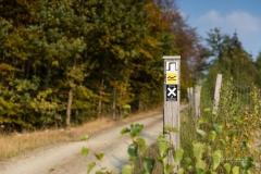 Waldskulpturenweg zwischen Oberkirchen und Schanze 1