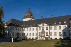 Waldskulpturenweg am Kloster Grafschaft 2