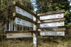 Waldskulpturenweg zwischen Oberkirchen und Schanze 7