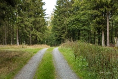 Waldskulpturenweg bei Kühhude 3