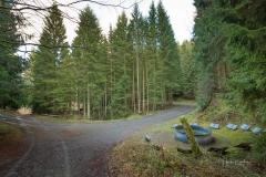 Waldskulpturenweg Hexenplatz-Oberkirchen-21