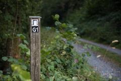 Waldskulpturenweg zwischen Kloster Grafschaft und Mühlenteich