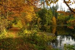 Mühlenteich im Herbst