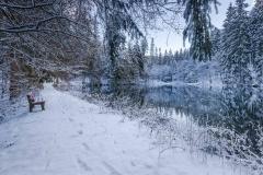 Mühlenteich im Winter 4