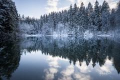Mühlenteich im Winter 2