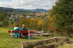 Aussicht vom Waldskulpturenweg auf Grafschaft 2