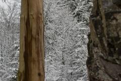 wSkulptur Stein-Zeit-Mensch im Winter 2