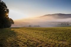 Werntrop-im-Morgendunst