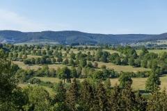 Aussicht vom Wilzenberg auf den Schmallenberg Golfplatz