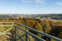 Wilzenberg-Herbst-10