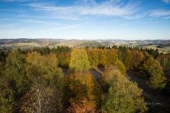 Wilzenberg-Herbst-11