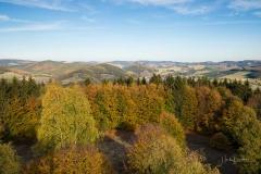 Wilzenberg-Herbst-12