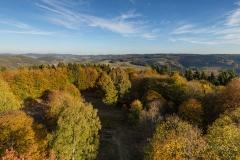 Wilzenberg-Herbst-14