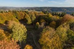 Wilzenberg-Herbst-15