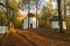 Wilzenberg-im-Herbst-06