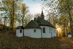 Wilzenberg-im-Herbst-07