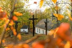 Wilzenberg-im-Herbst-11