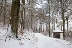 Winter_Wilzenberg-001