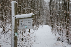 Winter_Wilzenberg-003