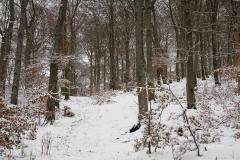 Winter_Wilzenberg-004