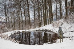Winter_Wilzenberg-008