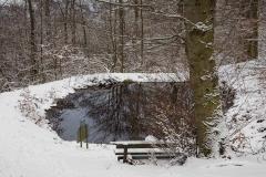 Winter_Wilzenberg-010