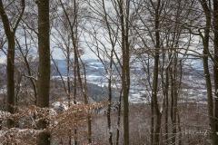Winter_Wilzenberg-011