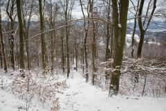 Winter_Wilzenberg-013