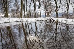 Winter_Wilzenberg-015
