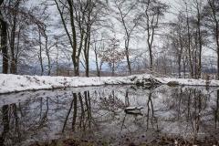 Winter_Wilzenberg-018