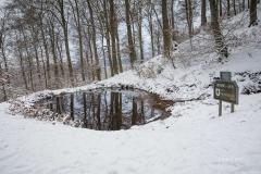 Winter_Wilzenberg-019
