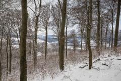 Winter_Wilzenberg-022