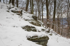 Winter_Wilzenberg-023
