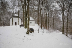 Winter_Wilzenberg-029