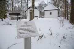 Winter_Wilzenberg-031
