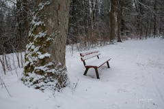 Winter_Wilzenberg-034