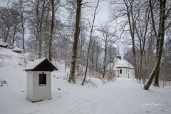 Winter_Wilzenberg-037