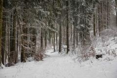 Winter_Wilzenberg-039