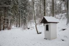 Winter_Wilzenberg-040