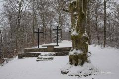 Winter_Wilzenberg-046