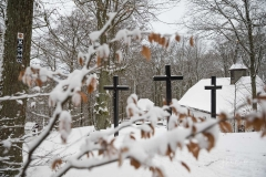 Winter_Wilzenberg-055
