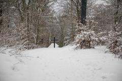 Winter_Wilzenberg-060