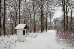 Winter_Wilzenberg-062