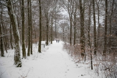 Winter_Wilzenberg-063