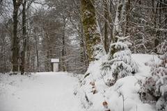 Winter_Wilzenberg-064