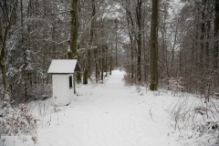Winter_Wilzenberg-065