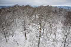 Winter_Wilzenberg-074